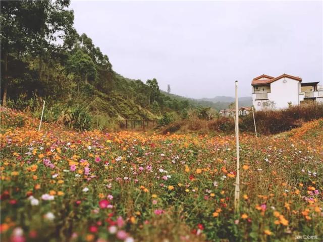 AAAA级别旅游度假风景区龙门南昆山温泉养生谷2.jpg