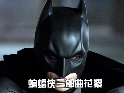 蝙蝠侠heianbaiduyun免费