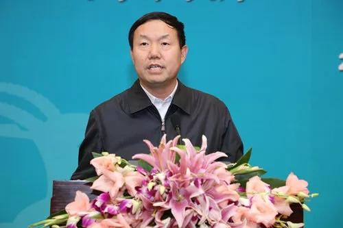 《国家高新区瞪羚企业发展报告2017》发布会科技部火炬中心主任张志宏出席发布会并讲话.jpg