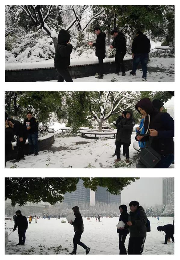 合肥汇众学员打雪仗1_副本.jpg